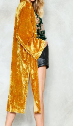 "Photo Credit: Nasty Gal ""Major Crushed Velvet Kimono"""